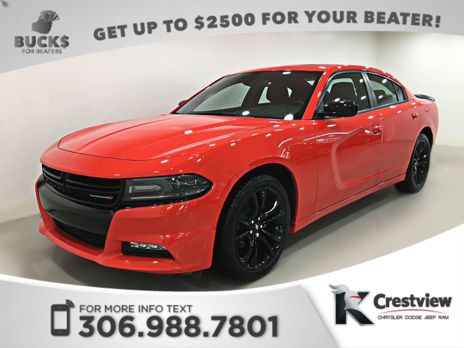 pre owned 2017 dodge charger sxt rallye blacktop sunroof. Black Bedroom Furniture Sets. Home Design Ideas